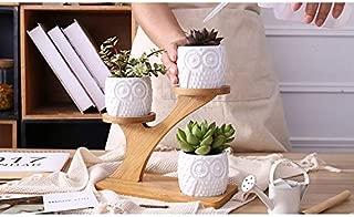 Loun1 Set Ceramic Owl Garden Pots Modern Decorative Nursery Succulent Plant Pot 3 Bonsai Planters with 3-Tier Bamboo Shelf Week Ceramic Planter