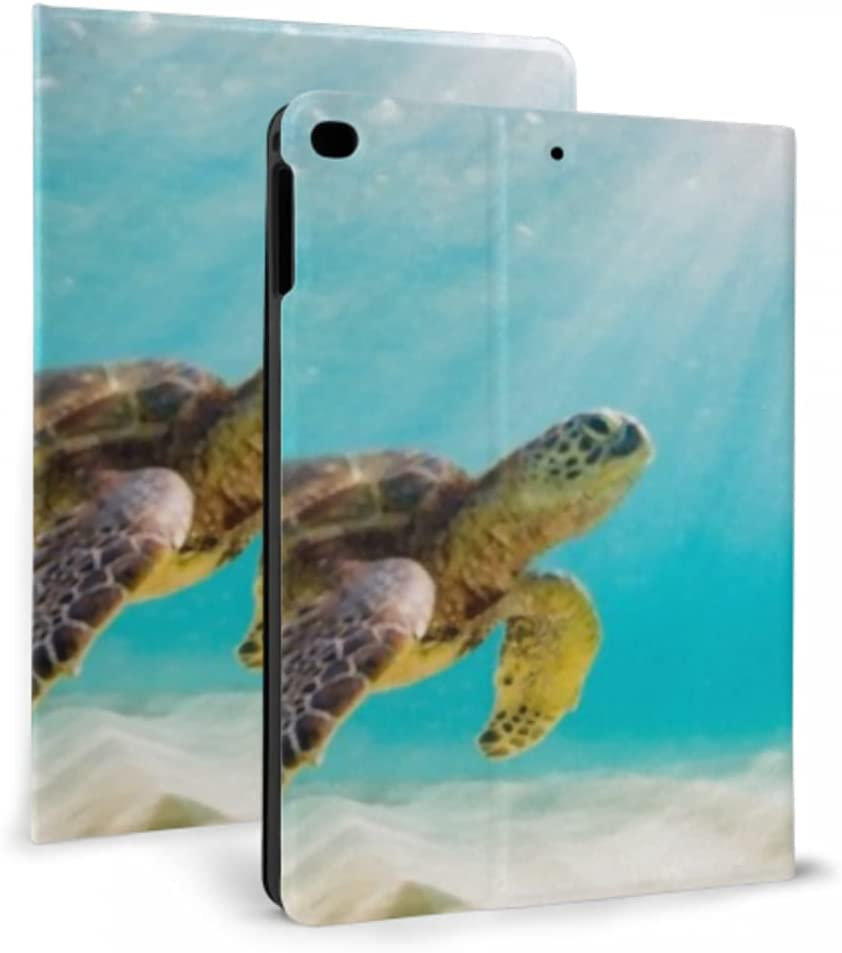 Case for ipad 2017 2018 air Galapago Photo 1 2 New products world's highest quality popular Turtle Super beauty product restock quality top! Sea