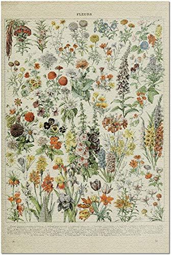 Romance-and-Beauty Verschiedene Blumen EIN Vintage Exlibris Adolphe Millot Artwork Premium 500 Stück Puzzle für Erwachsene, 15 x 20,5 Inch