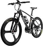 Erik Xian - Bicicleta eléctrica para bicicleta de montaña (fibra de carbono eléctrica)
