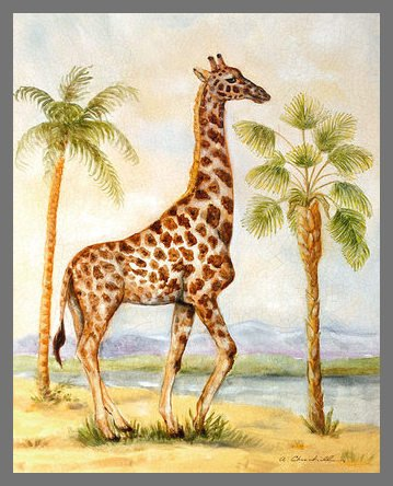 Alexandra Churchill Giraffe Africana Poster Bild Kunstdruck im Alu Rahmen in Champagne 50x40cm