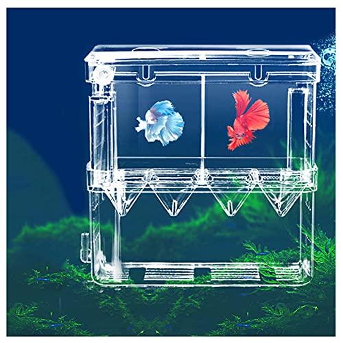 Scatola di Allevamento Acquario Scatola di Isolamento Vivaio di Pesci incubazione per Avannotti Contenitore per Allevamento Pesci per Acquario Pesce da cova Adatto per Acquari con Ventosa per Acquario