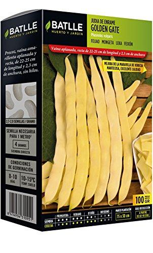 Batlle Graines de légumes – Bêche Venedig Wunder Rapid (100 g)