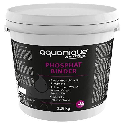 Aquanique aglutinador de fosfatos 2,5 kg, para estanques, suficiente para hasta 50.000 l, ayuda a prevenir las algas, contra el crecimiento de algas, inofensivo para los animales y las plantas