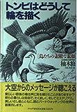 トンビはどうして輪を描く―鳥たちの素敵な素顔