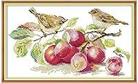 クロスステッチ刺繍キット刺しゅうの子初心者工芸品 鳥は果物を食べる40x50cm プレプリント刺繍手作りのの針仕事大人供手芸贈り物ホーム家の装飾 (11ct)