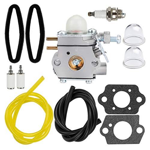 Hipa WT973 Carburetor + Tune Up Kit Air Filter for Bolens BL110 BL160 Trimmer Craftsman 316711020 316711021 316711022 316711370 316711390 316711470 316711471 316990100 316990110 Brushcutter