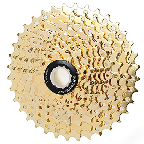 IIIL Bicicletta Ruota Libera Pignone 10 velocità 11-36T per Mountain Bike Bici Strada MTB BMX 10/20/30 velocità