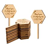 Thank You for Helping Me Grow Succulent Tags Teacher Appreciation Gifts, PARBEE 20PCS Hexagon Plant Stakes Labels Gift for Mother's Day Christmas Thanksgiving Baby Shower