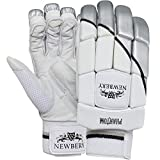 Newbery Cricket - Guantes de bateo para jóvenes (Unisex, Color Blanco/Plateado, Junior)