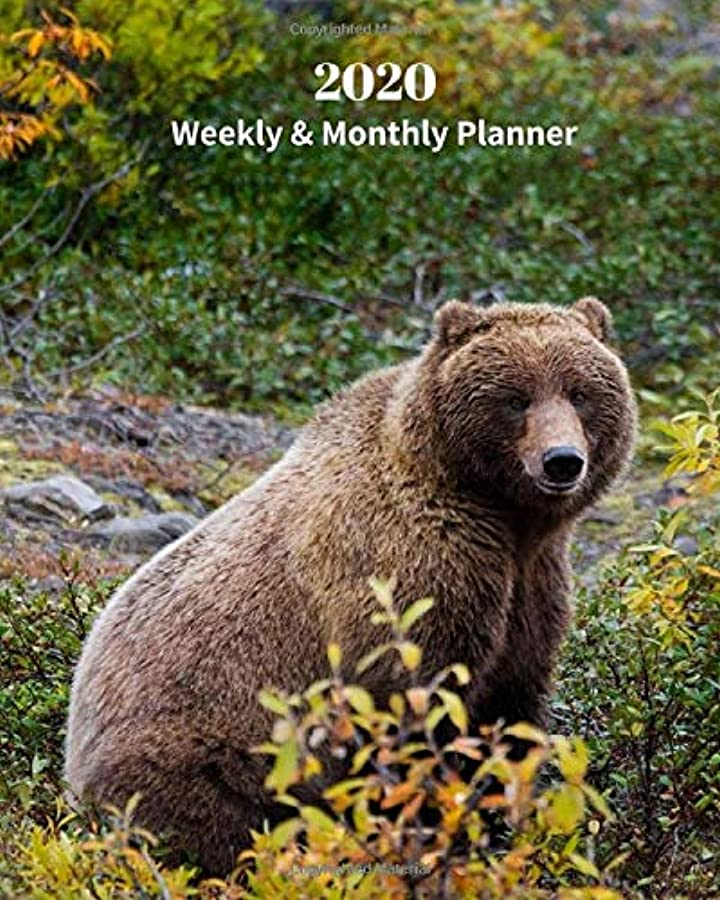 ジェームズダイソン鯨空虚2020 Weekly and Monthly Planner: Grizzly Bear - Monthly Calendar with U.S./UK/ Canadian/Christian/Jewish/Muslim Holidays– Calendar in Review/Notes 8 x 10 in.-Wildlife Nature Bear