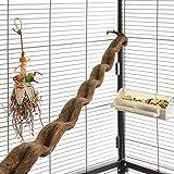 HappyBird  | Natur Klettersitzstange Liane 90-100cm für Papageien / 2,5-5cm breit/Sitzstange für Volieren und Käfige