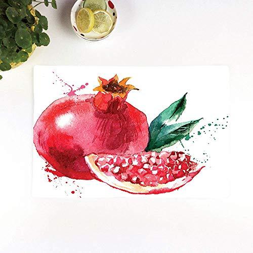 Juego de 4 Manteles Individuales,Antideslizantes, Fruta, Granada Dibujado a mano Acuarela Estilo,Manteles Individuales Lavables Salvamanteles Individuales Resistentes para la Mesa de Comedor de Cocina