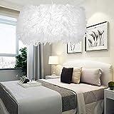 LIUNIAN 30CM Lámpara de techo Lámpara de araña Pantalla Minimalista Moda Moderna Luz de techo de plumas para la sala de estar Dormitorio Porche Bar Restaurante Hotel