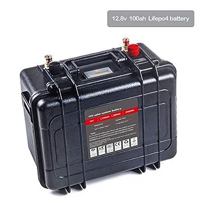 12 Volt 100 Ah LiFePo4 Akku von Qingmei
