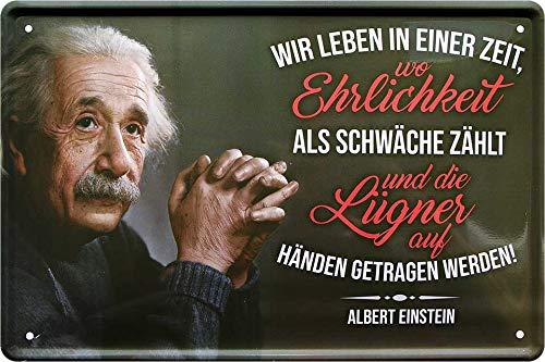 """Blechschilder Albert Einstein Zitat Spruch """"Wir Leben in Einer Zeit Nachdenken Ehrlichkeit Deko Metallschild Schild Geschenk für Weihnachten oder Geburtstag 20x30 cm"""