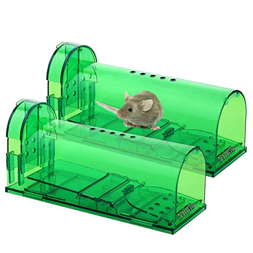DreiWasser Mausefalle lebend 2 Stück, Tierfreundliche Lebenfalle mit Luftlöchern für Mäuser im Haus oder Garten