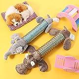 tonyg-p 2 pezzi di giochi con squeak giocattolo per cani, peluche interattivo per cuccioli, giocattolo interattivo per cuccioli durevole, adatto per cani piccoli e mediande