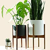 "Fox & Fern Mid Century Plant Stand Indoor - Acacia - EXCLUDING 10"" Ceramic Pot - Fits Snake Plant"
