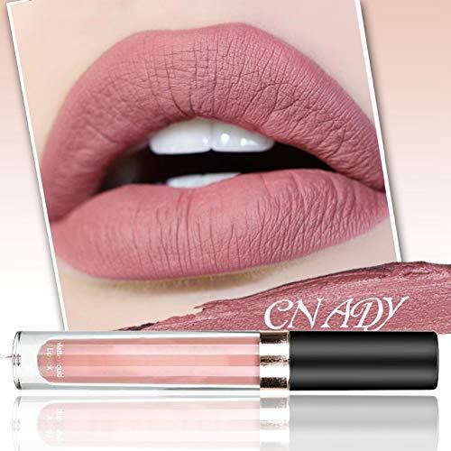 Matte Lipstick 10 couleurs mat Nude Lip Gloss Rouge à lèvres Liquid Foundation Lèvre Maquillage cosmétique Yiitay