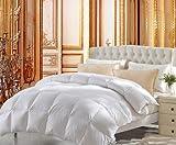 EGYPTO Microfibre Duvet Comforter Insert - Down Alternative - Hypoallergic for King Bed