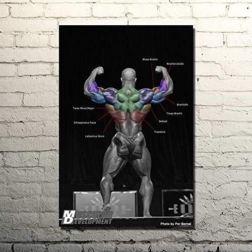 Wfmhra Levantamiento de Pesas Coleman Cita inspiradora Cartel de Arte impresión decoración de Gimnasio Fitness Deportes Imagen 50x75cm sin Marco