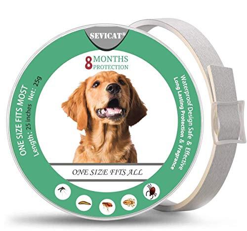 PROZADALAN Collare Antipulci Cane Impermeabile, Collari Antiparassitario 8 Mesi di Protezione per Piccolo Medio Grande Cani (63cm)