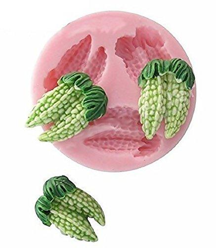 Siliconen mal voor ambachtelijk gebruik 3 exotische vruchten bittere meloen