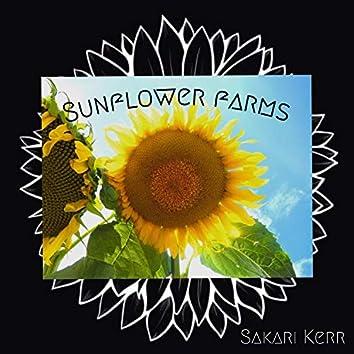 Sunflower Farms