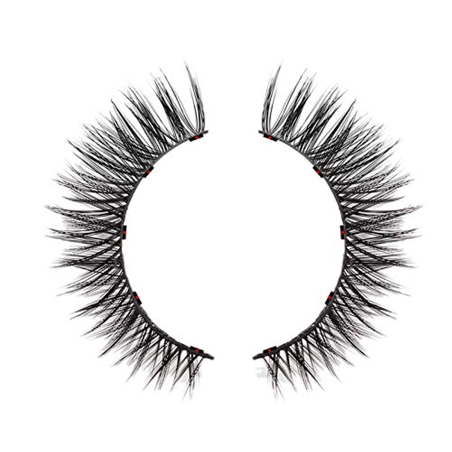 売り手視力アクセスできないTOOGOO 1セット磁気つけまつげ 防水防汚性手作り 着やすい まつげ女性の化粧まつ毛 Ad811