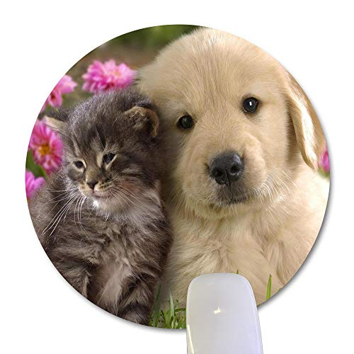 Wknoon Golden Retriever Puppy and Kitten in The Garden Round Mouse Pad, Cute Cat Dog Pets Animal Circular Mouse Pads Funny Design