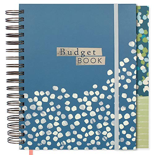 "Boxclever Press Budget Planner - Check Out The Video! Measures 9.5"" x 8"". Monthly Income & Home Expenditure Tracker, Regular Bill Organizer, 13 Pockets for Receipts & Bills. (Teal)"