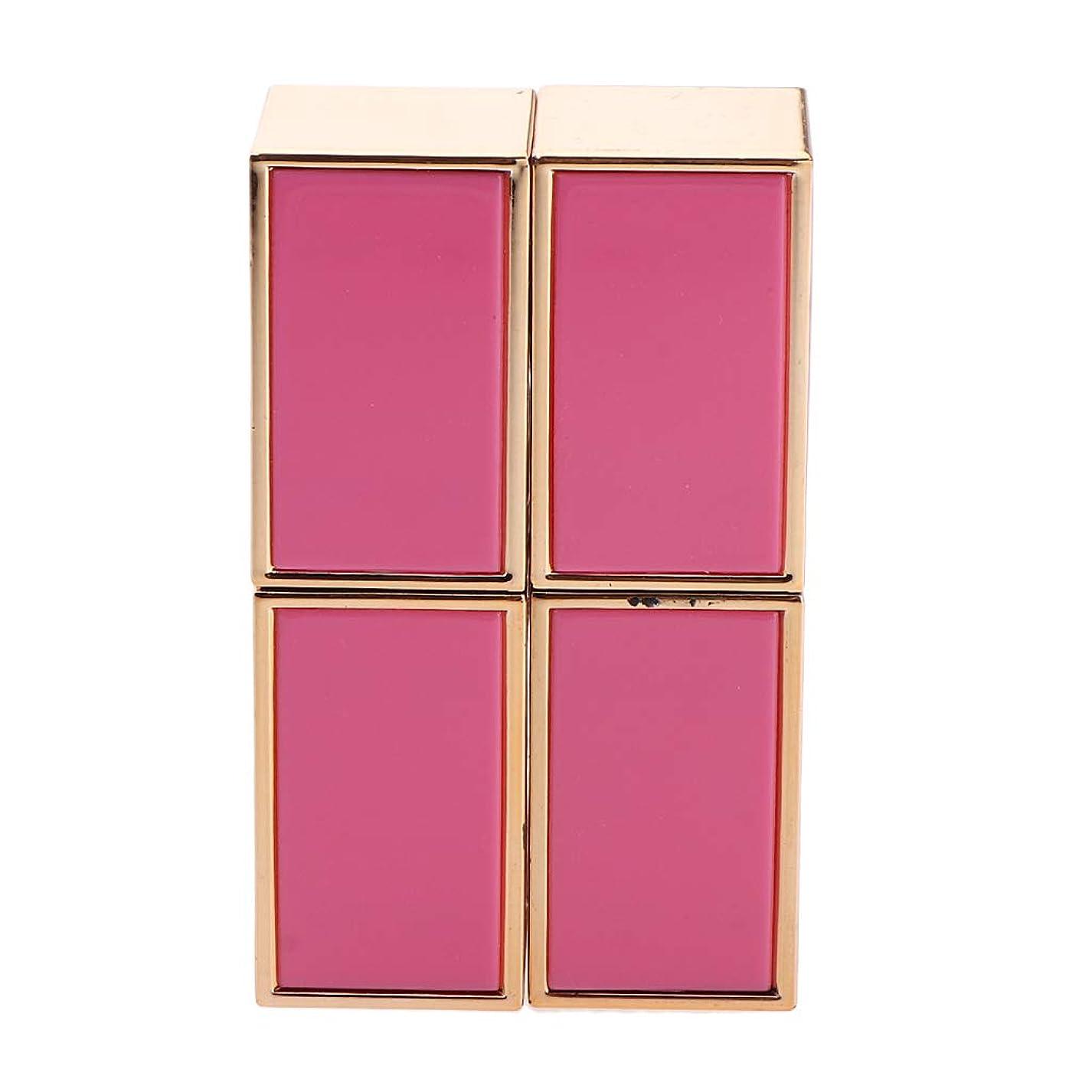敬礼捨てる請求DYNWAVE 口紅 容器 空 口紅チューブ 口紅コンテナ リップグロス管 手作り口紅容器 固体香水 2色選べ - ピンク