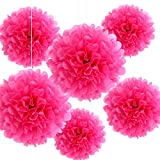 Bining Paper Pom Poms Hanging Gradient Paper Flower Ball Party Decorations Flowers Craft Kit for Graduation...