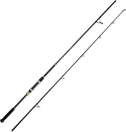 BERRYPRO Surf Spinning Fishing Rod Graphite Spinning Rod...
