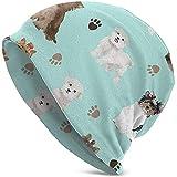 H.D. Casualbox Beanies Hat Yorkie Maltese Biewer Terriers Dogs - Gorro de Punto Ligero para Hombre (Fabricado en Japón)