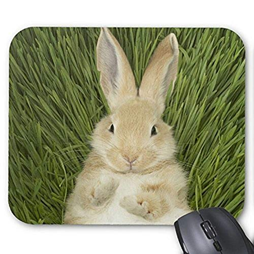 Yanteng Mouse pad gaming mouse mousepad Lovely Rabbit...