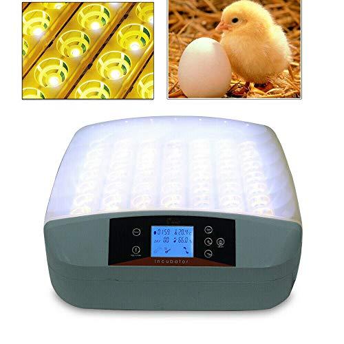MINUS ONE Inkubator Vollautomatische Brutmaschine,56 Eier Intelligentes digitales Brutmaschine Brutkasten mit LED Temperaturanzeige und Feuchtigkeitsregulierung