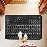 Chic Houses Felpudo pequeño elemento ciencia química bienvenida Mat antideslizante puerta delantera 23.6 x 15.7 pulgadas 2030381