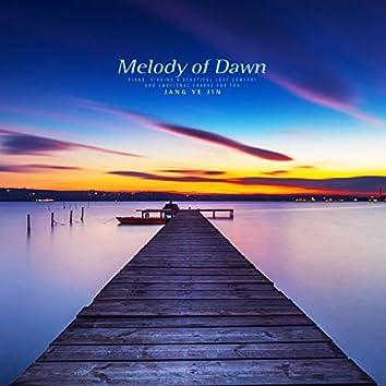 새벽의 멜로디