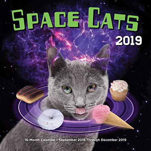 Space Cats 2019: 16-Month Calendar - September 2018 through December 2019 (Calendars 2019)