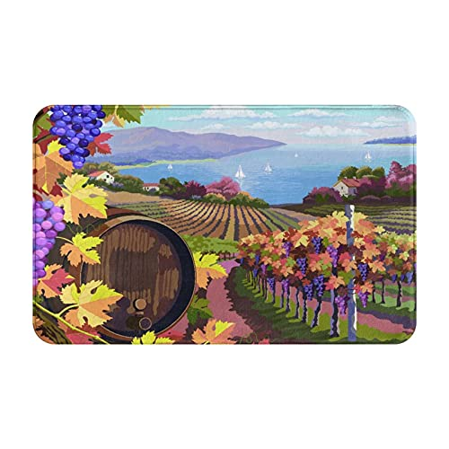 CVSANALA Antideslizante Suave Alfombra de Baño,Paisaje Rural con viñedos y racimos de Uvas y Barril de Madera para Vino,Micro Personalizado Decoración del Hogar Baño Alfombra de Piso,80 x 49 CM