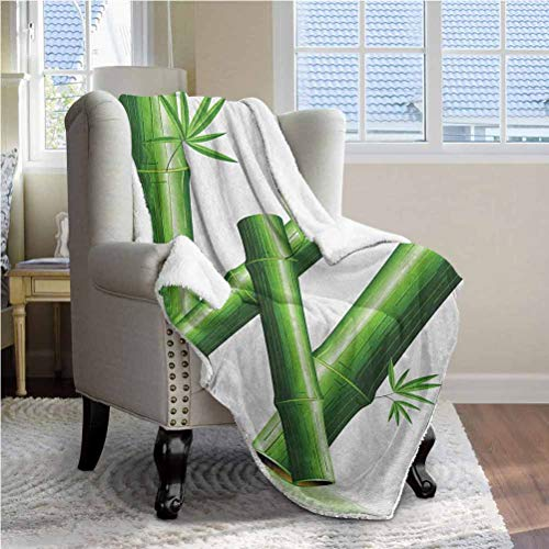 ParadiseDecor 60'x70' Letter W Soft Fleece Blanket Super Soft Comfy Warm Fuzzy Tv Blanket Bamboo Branches Forming Letter W Zen Spa Themed Alphabet Typeset Green Leaves Green White