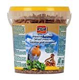 Riga Insectes Séchés Pot pour Oiseaux 140 g
