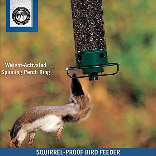 Droll Yankees DROFLIPPER Squirrel-Proof Feeder