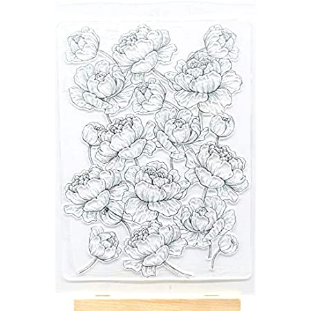 Welcome to Joyful Home 2pc//Set Different Flower Background Clear Stamp for Card Making Decoration and Scrapbooking 11x16cm
