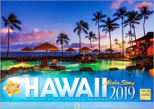 ハワイ 2019年 カレンダー 壁掛け