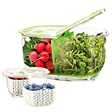 LUXEAR Vegetable Fruit Produce Storage Containers, Partitioned Produce Saver Fridge Storage Container, Fresh Lettuce Keeper, Used in Storing Fruits Veggie Salad - BPA-Free - 2Piece