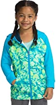 Hanes Men's Pullover EcoSmart Hooded Sweatshirt, cardinal, Small