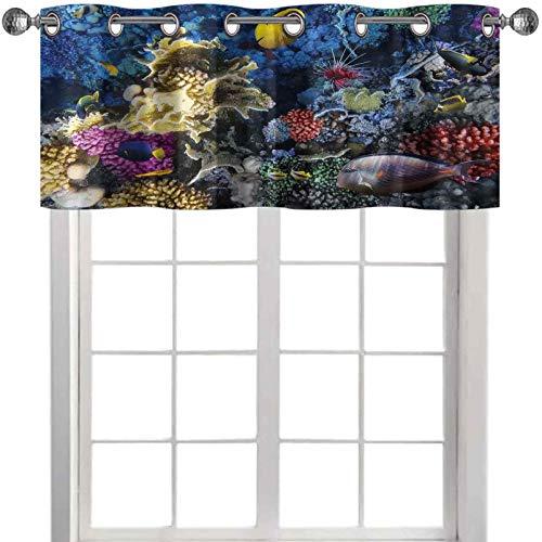 Cenefa colorida colonia de arrecifes de coral y peces en el mar rojo Egipto África subacuática imagen 36 pulgadas de ancho x 18 pulgadas de largo cortinas valencia para ventanas multicolor